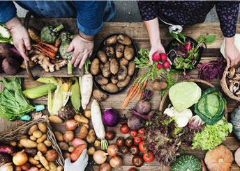 تجربه ای ویژه از غذای کم شتاب و آهسته در ایتالیا
