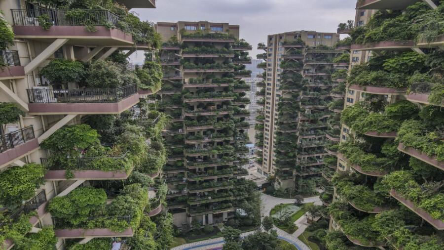 ساخت شهرک هایی به شکل باغ عمودی در چین!
