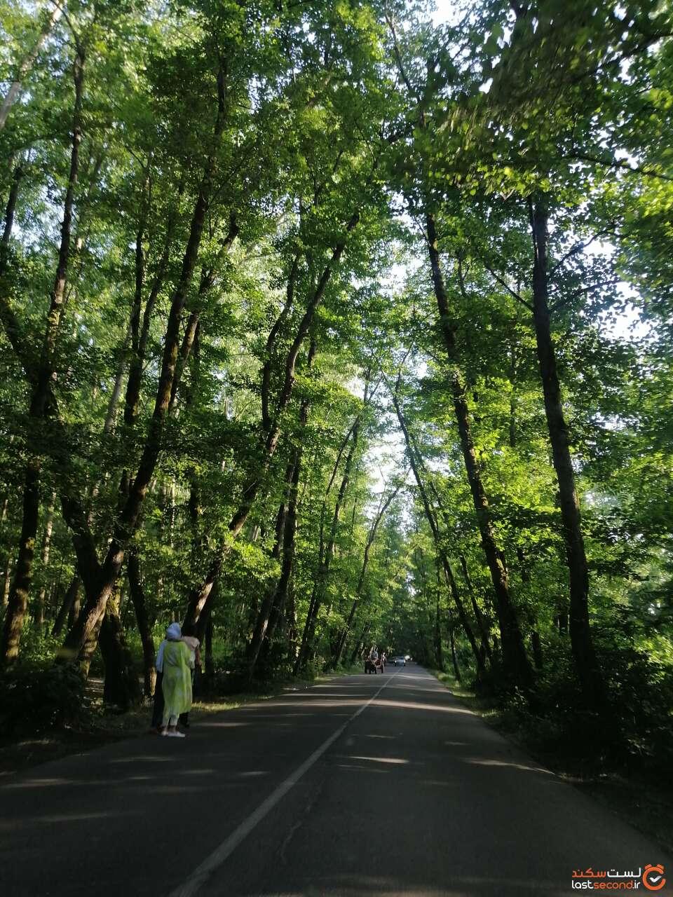 جاده روستای صفرابسته