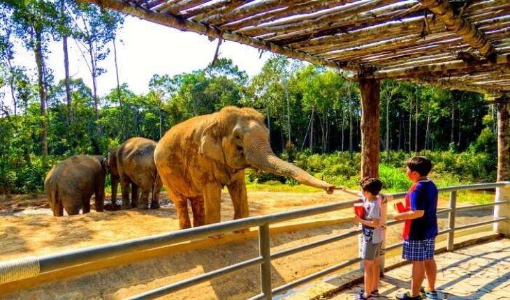 معروفترین و بزرگترین باغ وحش های جهان + تصاویر