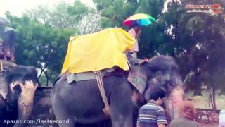 سفر به سرزمین هندوها در 1 دقیقه