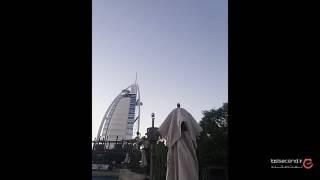 نگاهی به پارک آبی دبی، وایلد وادی