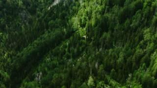 طبیعت زیبای اتریش