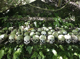 جنگل مردگان ، سنتی عجیب در بالی