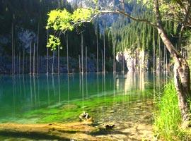 منظره های باورنکردنی و خارق العاده در طبیعت
