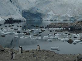سفر به قطب جنوب (سفرنامه)