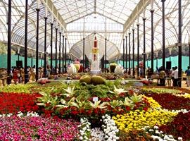 بهشتی روی زمین در بزرگترین باغ گل و گیاه ، هندوستان