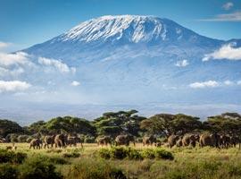 تحقق یک رویا در شرق آفریقا (سفرنامه کنیا-تانزانیا)