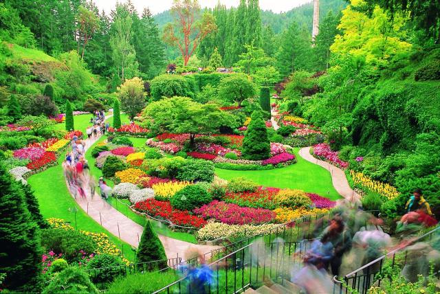 زیباترین و بزرگترین باغ گل دنیا + تصاویر