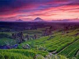راهنمای سفر به بالی (اندونزی) و کارهایی که باید انجام دهید